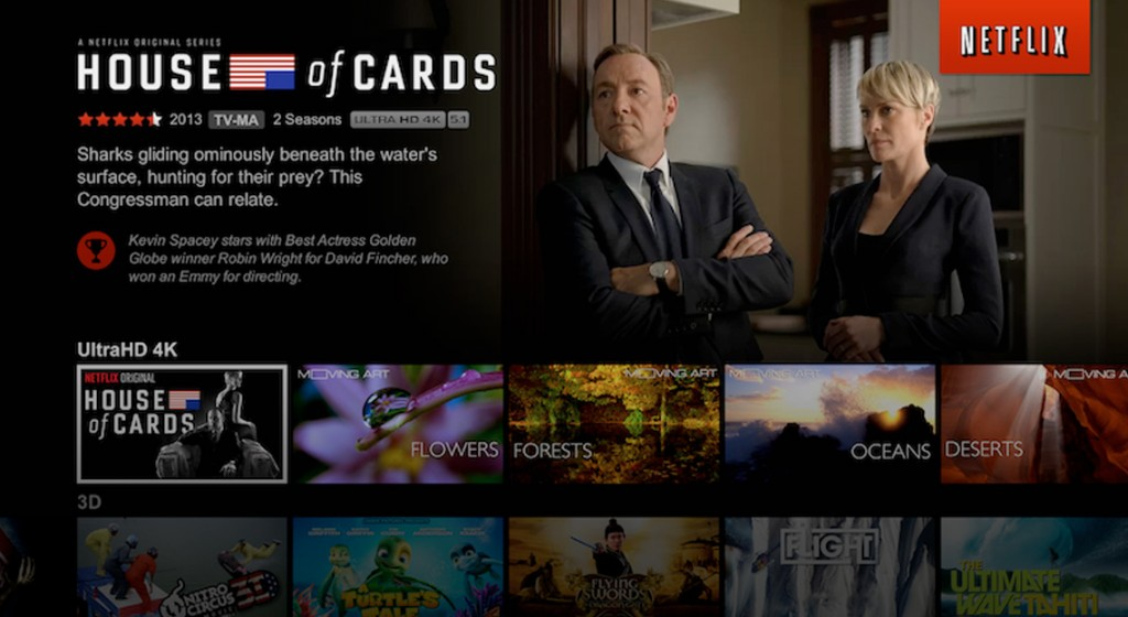 netflix interface